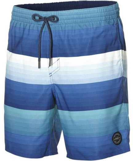 Oneill férfi PM LONG VERT ART SHORTS short